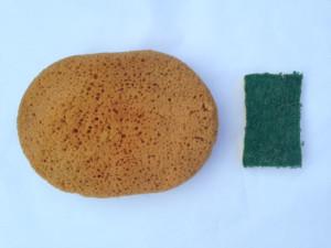 Sponge-2