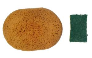 Sponge-4