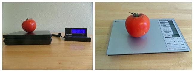 Scale-Comparison